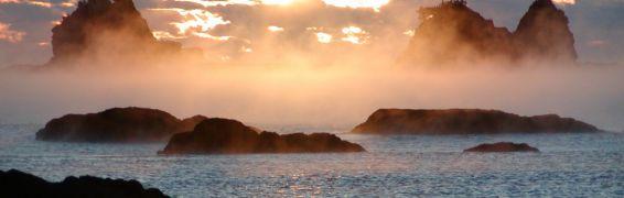 海霧とイセエビ